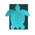 icons-turtle